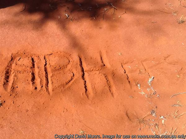 The ABH'ers written into the Sand 2013