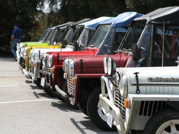 Mokes lned up at International Moke Day in Perth Western Australia