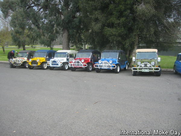 Internatoinal Moke Day 2009 in North East Victoria