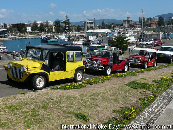 International Moke Day 2010-1