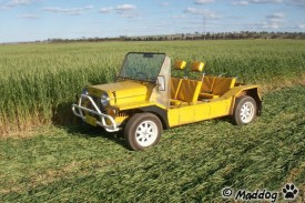 International Moke Day 2011 Wheat belt Western Australia